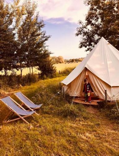 Bell tent summer